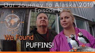 OUR 2019 JOURNEY TO ALASKA EPISODE 19   SEA LIFE IN SEWARD ALASKA   RV LIVING