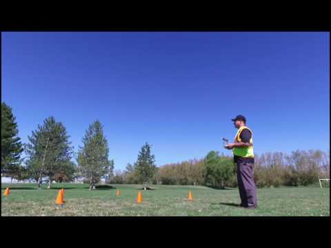 Introduction to Industrial & Commercial UAV (Drone) Programs