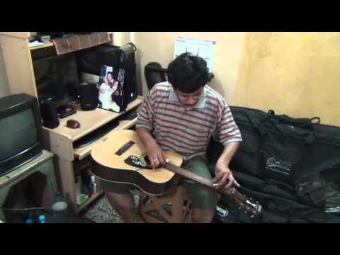 sanam-re-instrumental-hawaiianguitar-by-pramit-das-arijit-singh-hits-song