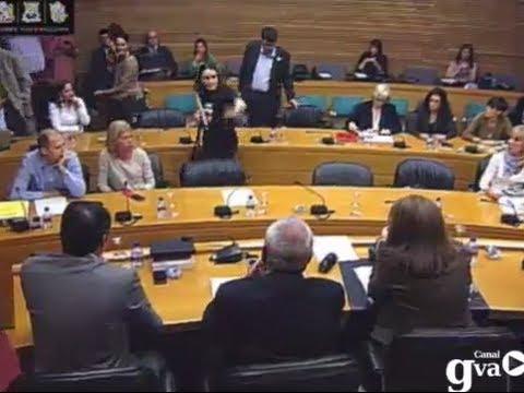 """Diputats han abandonat una comissió en les Corts cridant """"VERGONYA!"""" - Nou RTVV"""