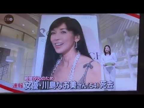 川島なお美さん死去 For an actress and Naomi Kawashima bileduct cancer,I die.