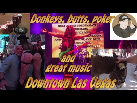 Donkeys, Butts, Poker And Great Music Downtown Las Vegas! Vlog #64