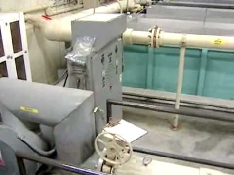 Fish Farming Recirculating Systems
