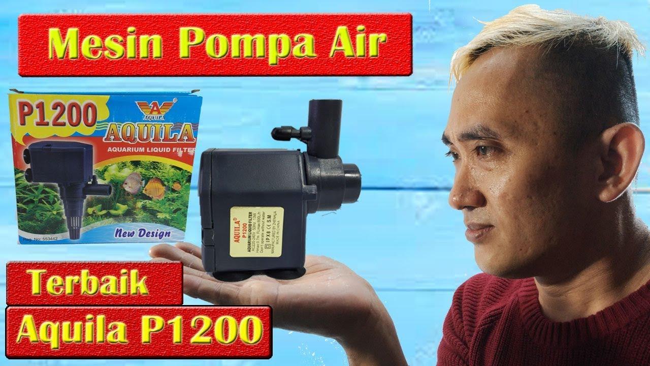 Review Mesin Pompa Air Aquarium Aquila P1200 TERBAIK - YouTube