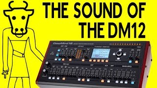 The Sound & Character of The Behringer DM12