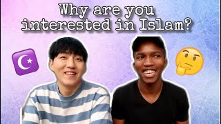 Why non-Muslims became interested in Islam?