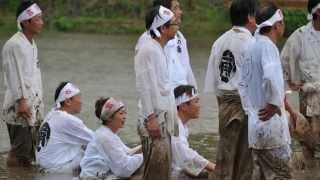 2011年6月5日、日置市日吉鬼丸神社で行われた御田植祭のせっぺとべを撮...