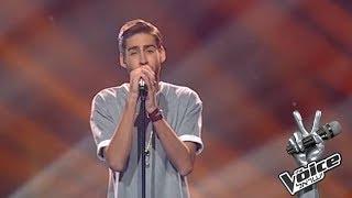 ישראל 3 The Voice - ניב דמירל - בראשית