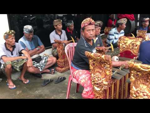 Gamelan Orchestra, street side performance, Tanah Lot, Bali, Indonesia