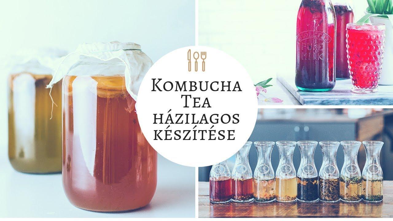 29 ok, amiért jó ha kombucha teát iszunk | eremtarolok.hu - Kombucha fogyás eredményeket