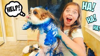 I DYED MY SISTER'S DOG BLUE!!