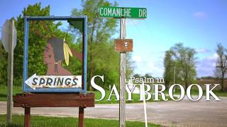 'a Psalm in Saybrook' - Ch 113