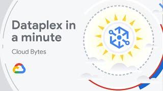 What Is Dataplex?