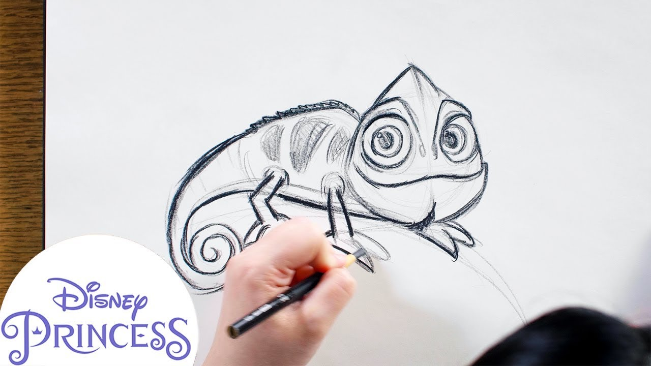 How To Draw Pascal From Tangled Disney Princess Youtube