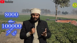Low Highest Budget All Airguns New Price In Pakistan Full Video 2020