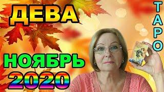 ДЕВА НОЯБРЬ 2020 ПРОГНОЗ ТАРО