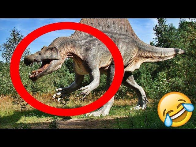 Desmintiendo Videos Fake De Dinosaurios Reales Captados En Camara 2019 Lavelociblue Youtube Los dinosaurios fueron una parte importante y asombrosa de nuestra historia, y a pesar de que nunca podremos entenderlos completamente o saber con exactitud los descubrimientos fósiles que se han realizado han brindado muchas pistas sobre la vida y las características de los dinosaurios, como su. de dinosaurios reales captados en