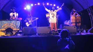 Pat Thomas & Kwashibu Area Band @ Festival Mundial Tilburg 2016