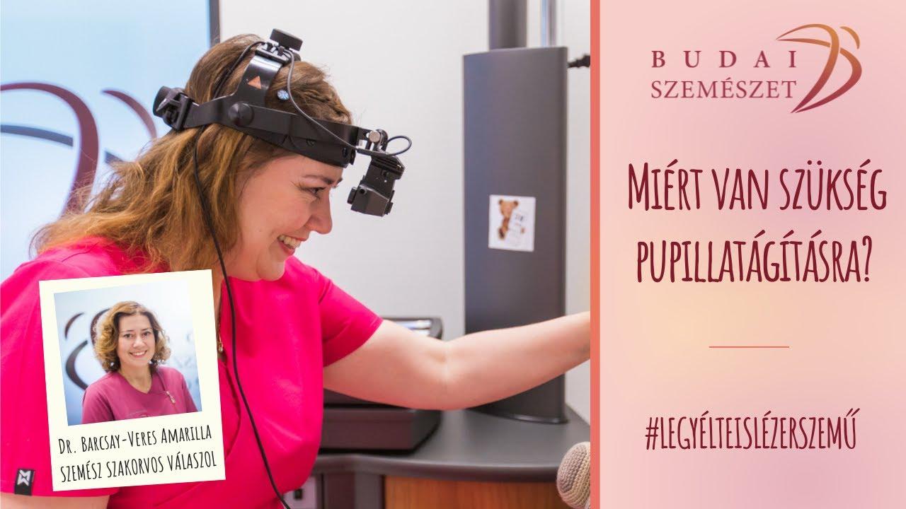 szemészeti kurzusok)