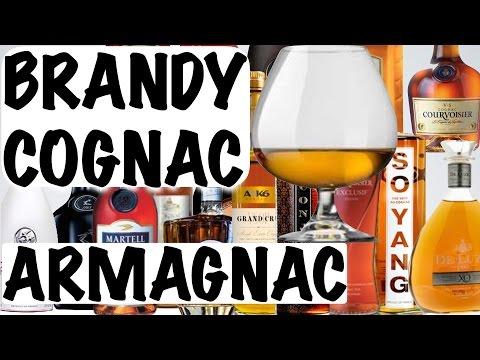 COGNAC, BRANDY and ARMAGNAC - Alcohol 101