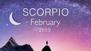 They're crazy about you! Scorpio February 2019. Tarot