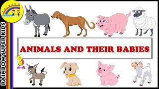 Animals and their Young Ones - Animals & their Babies - Best Learning Videos