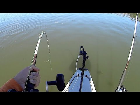 Timing Is Everything In Fishing