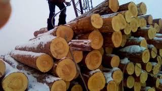 Строполим лес со стропальщиком под краном и везем лес на раму Р 63 будут лафет и доску