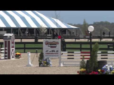 Kentucky Gentleman ridden by Kathleen Upham Wright--Medium Ch/Ad Jumpers (Round II)