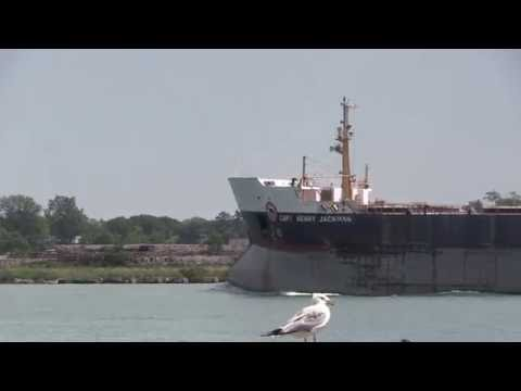 Detroit River/Great Lakes Commerce. Captain Henry Jackman