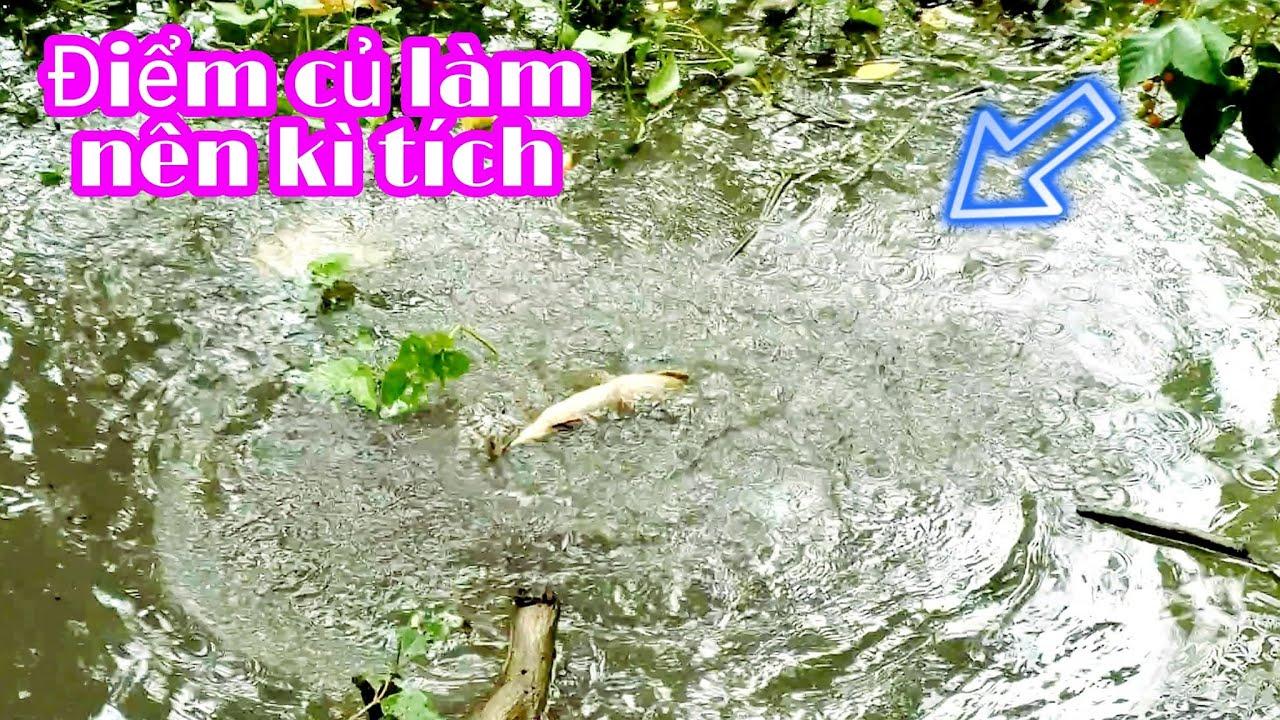 DÁM CHẮC CÁC BẠN CHƯA CÂU MỒI NÀY BAO GIỜ,  MỒI LẠ VỚI MÌNH MỒI BÉN CỦA E NÓ - FISHING