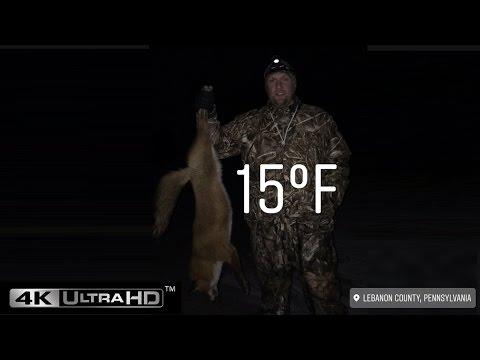 2017 Pennsylvania Fox Hunting