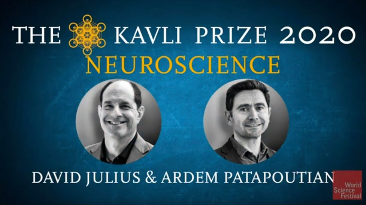 Science in Focus. The Kavli Prize 2020 | Neuroscience