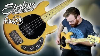 A $500 Stingray Bass?! // Sterling By Music Man Ray24CA [Bass Demo]