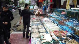 Mercado en China probable ORIGEN del CORONAVIRUS