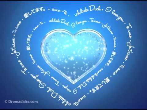 Carte D Amour Dromadaire Je T Aime Dans Toutes Les Langues By Dromadairevideo