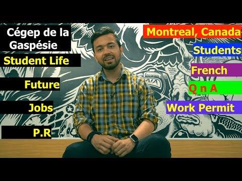 Meeting Indian Students Of  Cégep De La Gaspésie, Montreal, French, Jobs, Courses, QnA