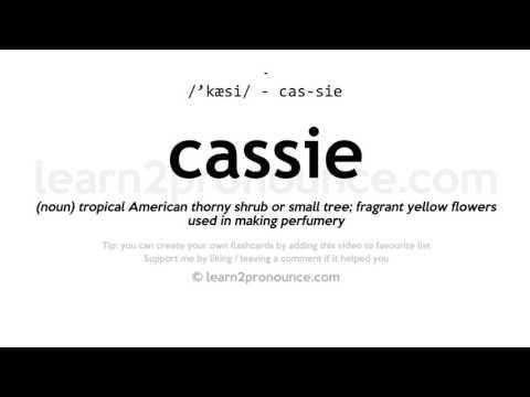 Cassie pronunciation and definition