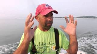Local oyster farmers show how it