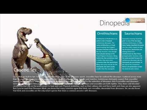 Dino pedia