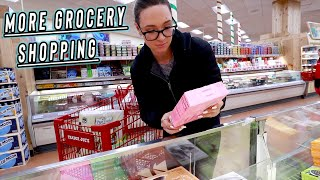 trader joes grocery shopping cause im an adult... vlogmas day 10