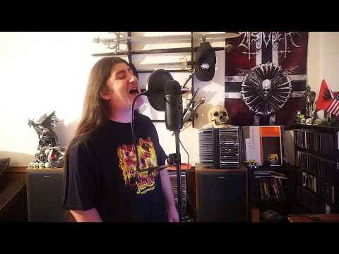 """Iron Maiden """" Run to the Hills """" ( vocal cover )"""