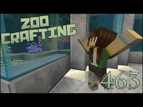 Building Nami Cove Coral Reef!! 🐘 Zoo Crafting Special! Epis