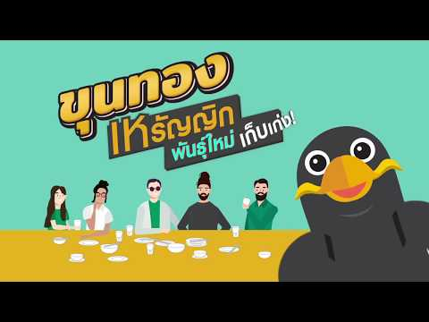 KhunThong (ขุนทอง) – เหรัญญิกพันธุ์ใหม่ เก็บเก่ง