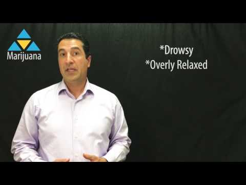 Marijuana Drug Fact Information Video With Dr. Rajy Abulhosn, Medical Director