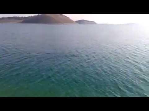 erkan tosun sis balıgı avı parmaklı videosu