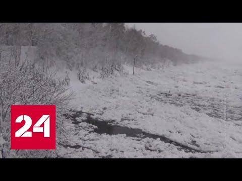 Аномальное тепло: в Красноярском крае поднимается вода в Енисее - Россия 24