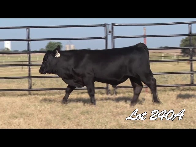 Pollard Farms Lot 240A