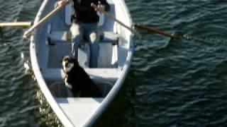 'Oblique'  Forward Rowing System