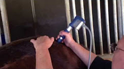 hqdefault - Shock Wave Therapy For Back Pain In Horses